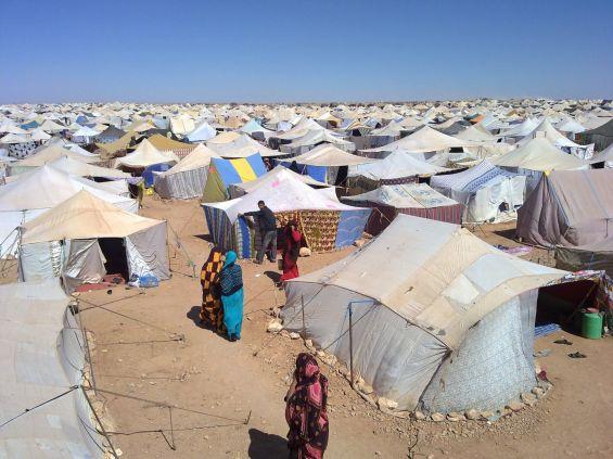 خبراء يحذرون من أن وجود مخيمات تندوف يشكل تهديدا لاستقرار منطقة الساحل وأوروبا
