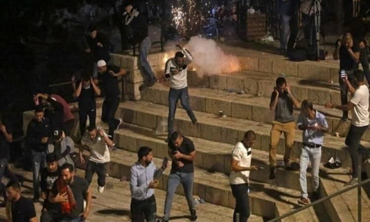 منظمة العفو الدولية تتهم إسرائيل بـاستخدام القوة والوحشية ضد الفلسطينيين