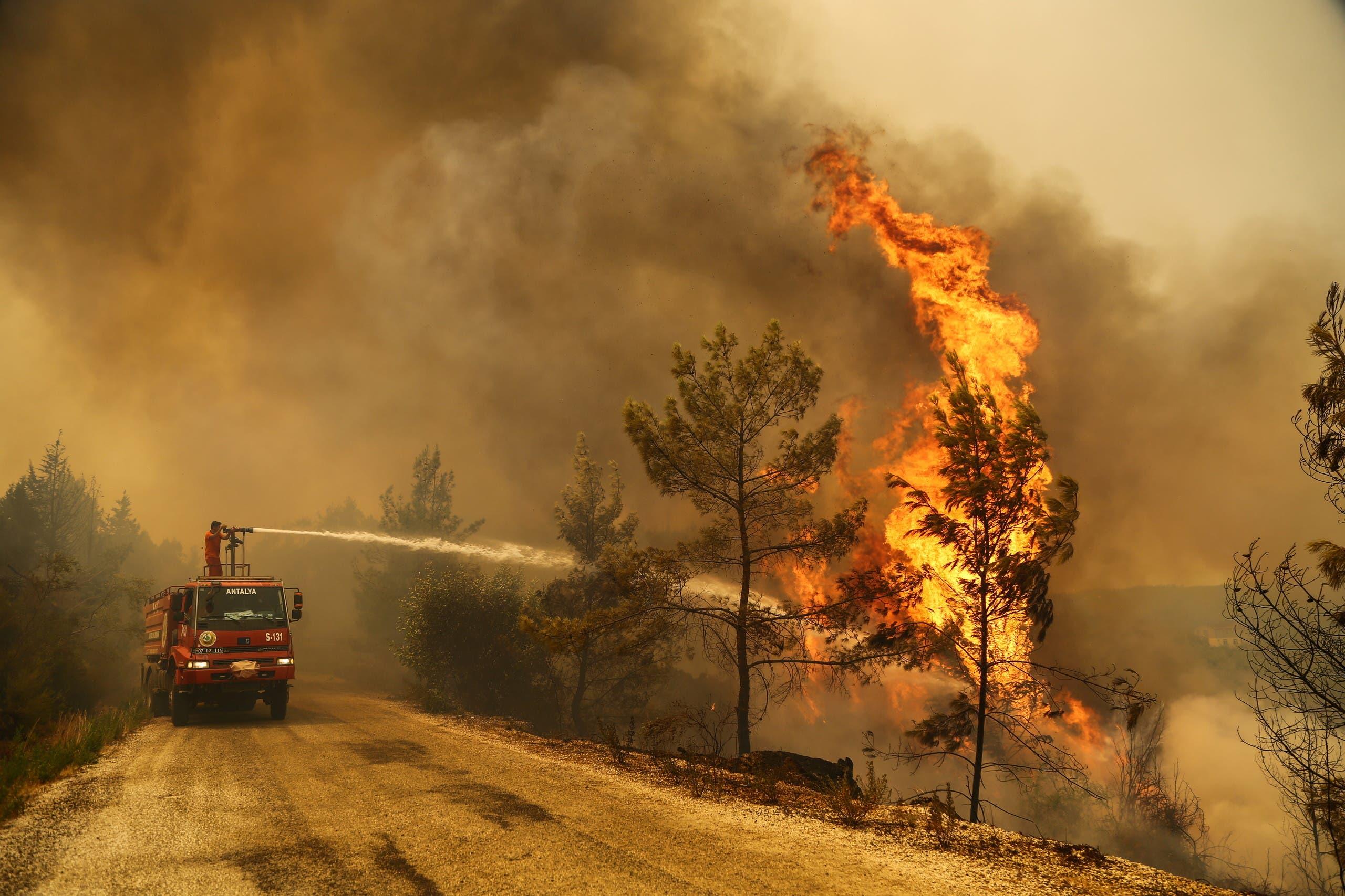 دراسة أمريكية..دخان حرائق الغابات يزيد من إصابات ووفيات كورونا