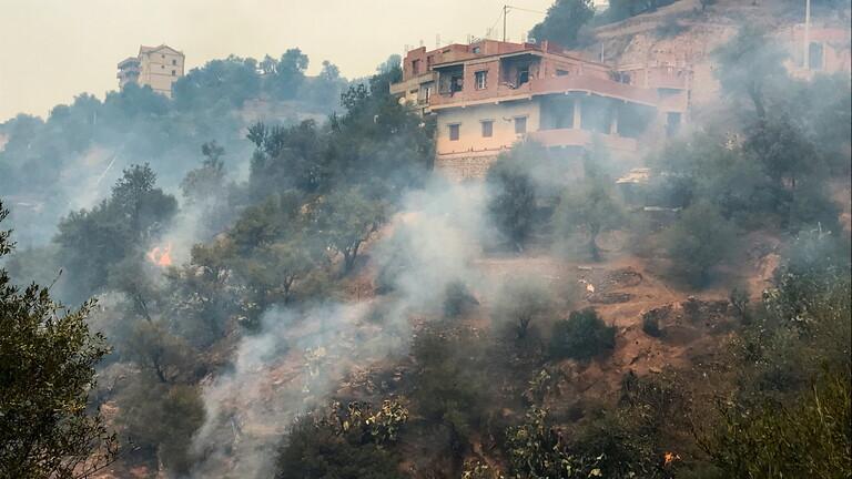 ارتفاع حصيلة ضحايا الحرائق في الجزائر إلى 8 قتلى