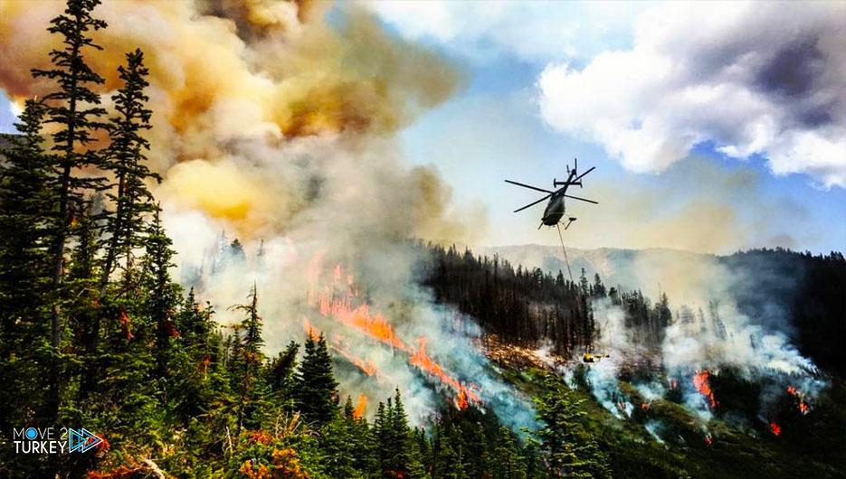 الأمم المتحدة تبدي استعدادها لمساعدة تركيا في مكافحة حرائق الغابات