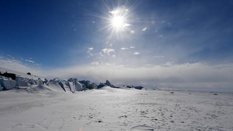 """اكتشاف مخلوقات بحرية غريبة في """"بوابة سحرية لعالم آخر"""" في أنتاركتيكا"""