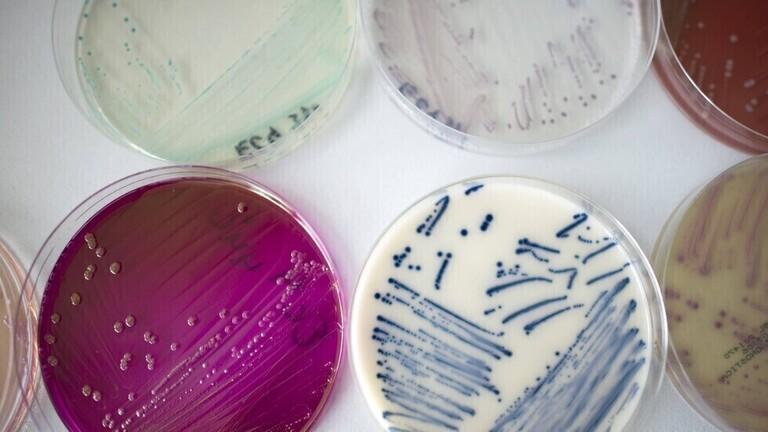 العلماء يبتكرون دواء ثوريا يستهدف البكتيريا الخارقة المقاومة للمضادات الحيوية