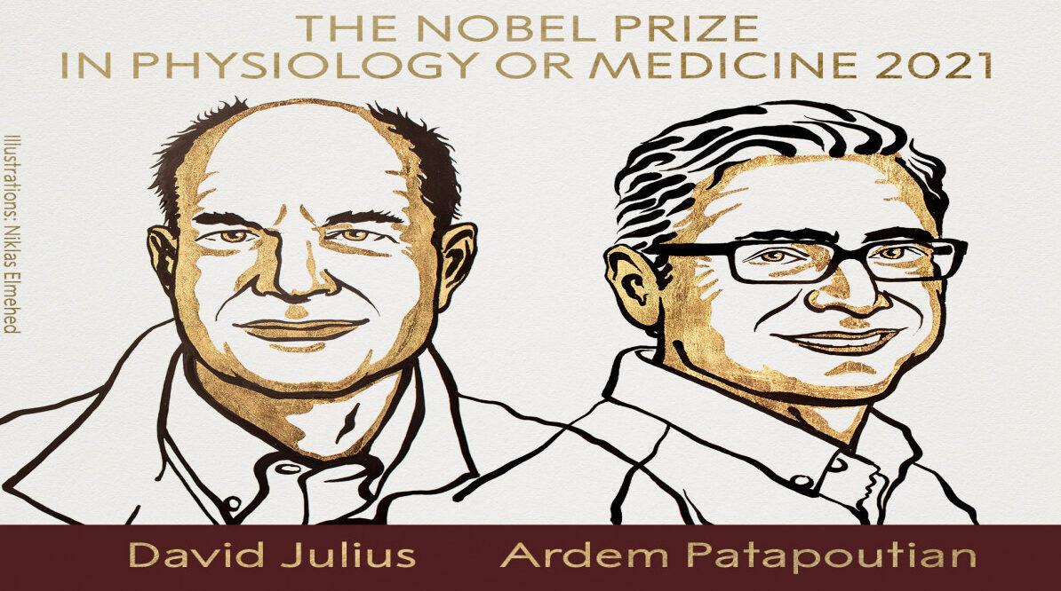 منح جائزة نوبل للطب 2021 للأميركيين ديفيد جوليوس وأرديم باتابوتيان
